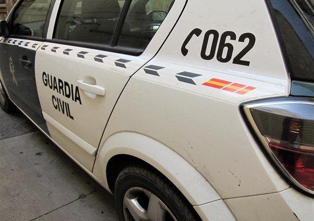 Detenido un varón tras desmantelarse 800 plantas de marihuana