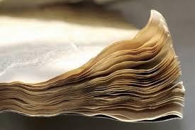[SPS] Terminan de recuperar todo lo que quedaba del diario de Barol.