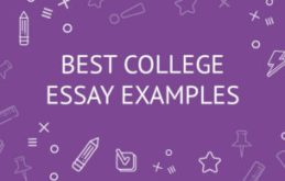 common app example essays
