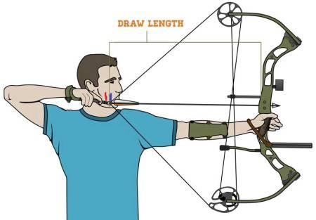 how to set up a compound bow the easy way elite huntsman. Black Bedroom Furniture Sets. Home Design Ideas