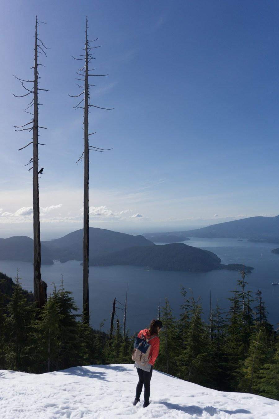 cypress hike-2