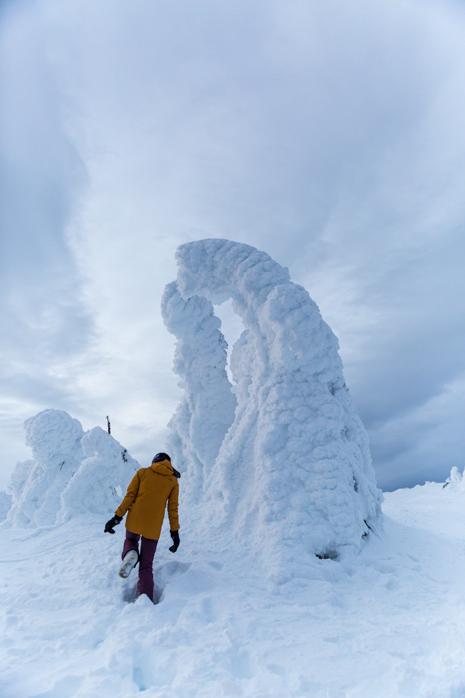 Snow Ghost Big White