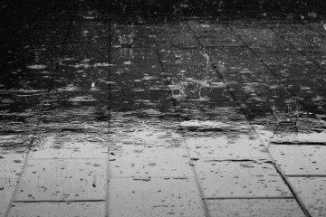 Rainwater Management