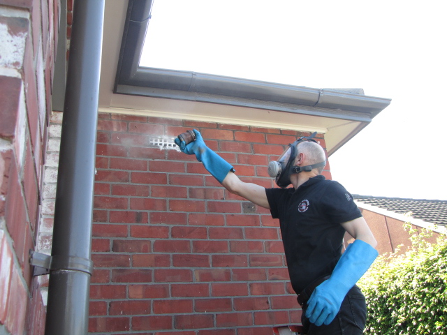 Christchurch Pest Control and Exterminators Elite Pest Control