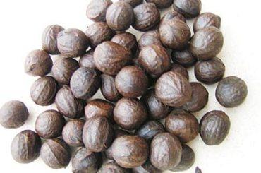 African walnut health benefits