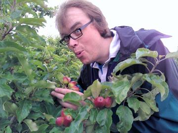 Davy witnessing apples