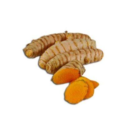 Frisk økologisk gurkemeje er en af vores favoritter. Køb frisk og økologisk gurkemeje hos Elixira!