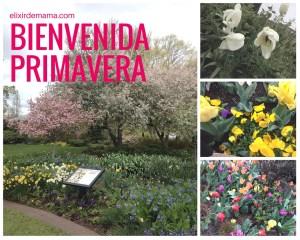 bienvenida primavera