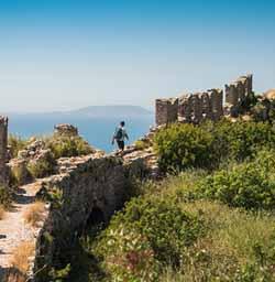 Elixir Ancient Sites