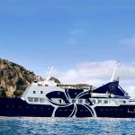 The Elysium Elixir Cruises Ship