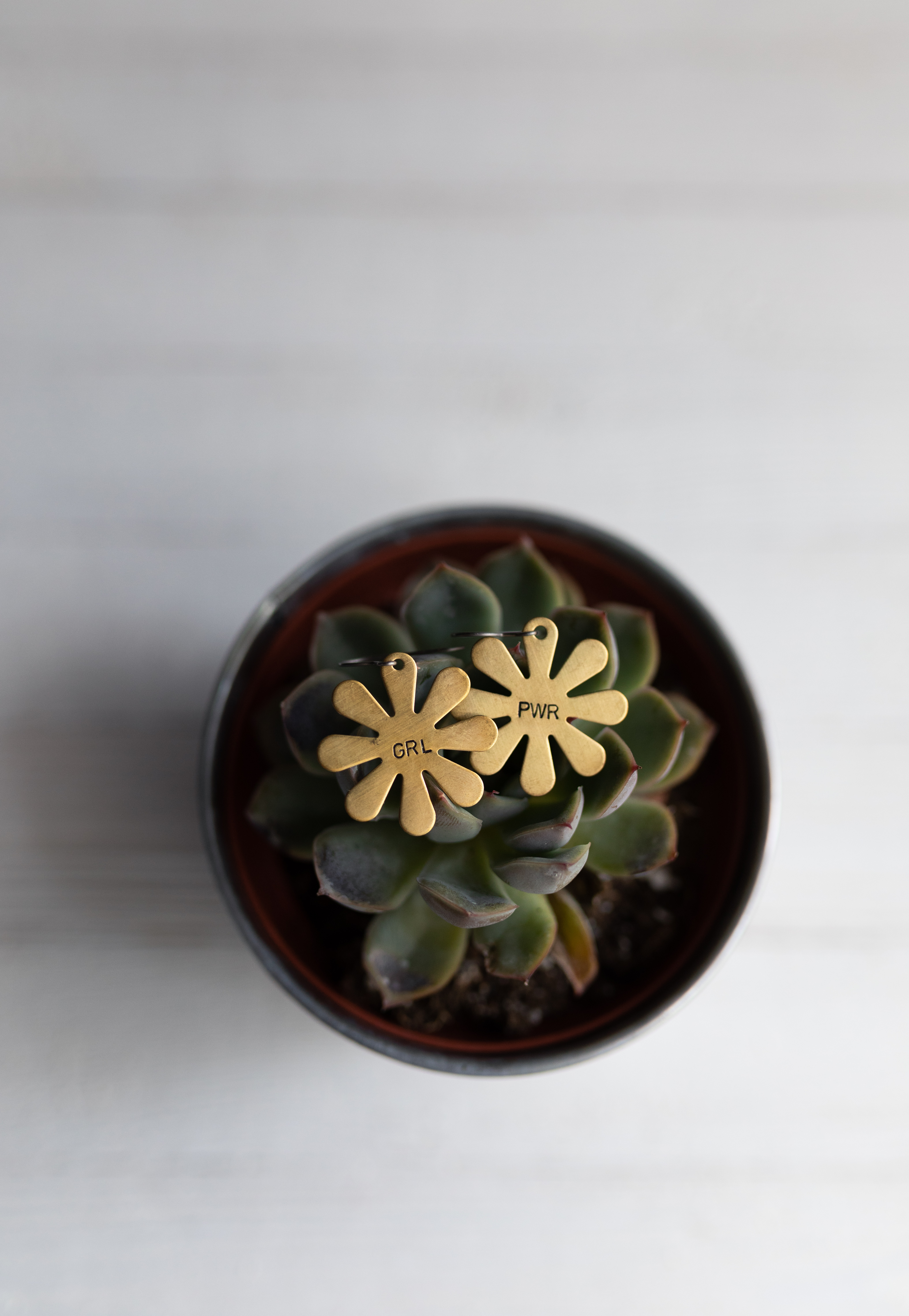 gold flower earrings presented on a succulent. Product photography matters by Elizabeth A. Images