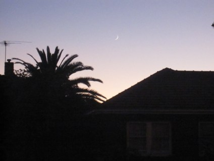 Waning crescent close to dawn