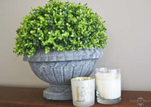 Grey urn with boxwood