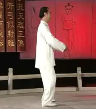 Qigong   Tai Chi Notebook qishiside