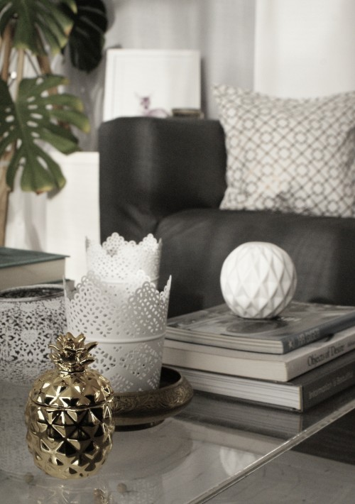 Decology - EDIT joins as interior designer