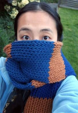 Ravenclaw_scarf