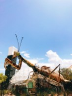 Giant grasshopper at the Container Park!
