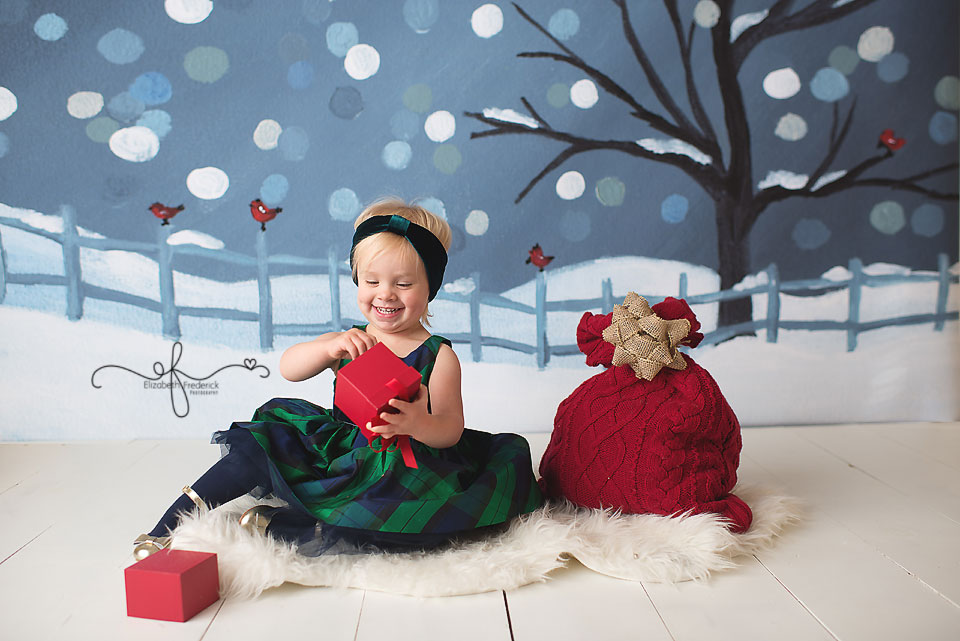 Holiday Mini Session | CT Photographer Elizabeth Frederick Photography