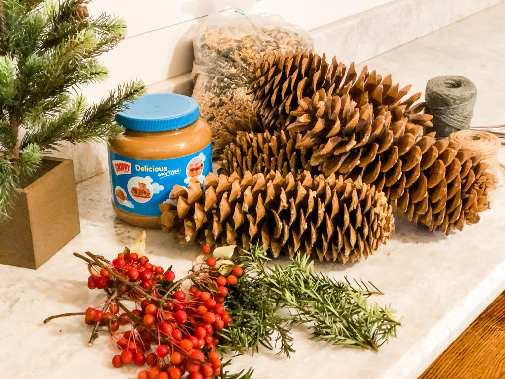 pinecone feeder supplies