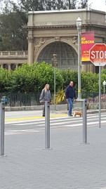 Walking their dog