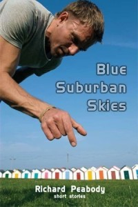 Blue Suburban Skies book cover