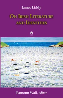 Book Cover On Irish Literature and Identities