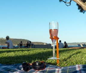 Wine, sunnies, a picnic blanket