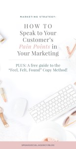 "How to Speak to your Ideal Client's Pain Points in Your Marketing - a guide to identifying your client's pain points and then speaking directly to them! Plus, a free guide on ""Feel, Felt, Found"" Copywriting!"