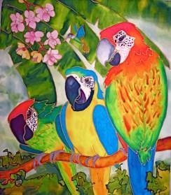macaws 1.6