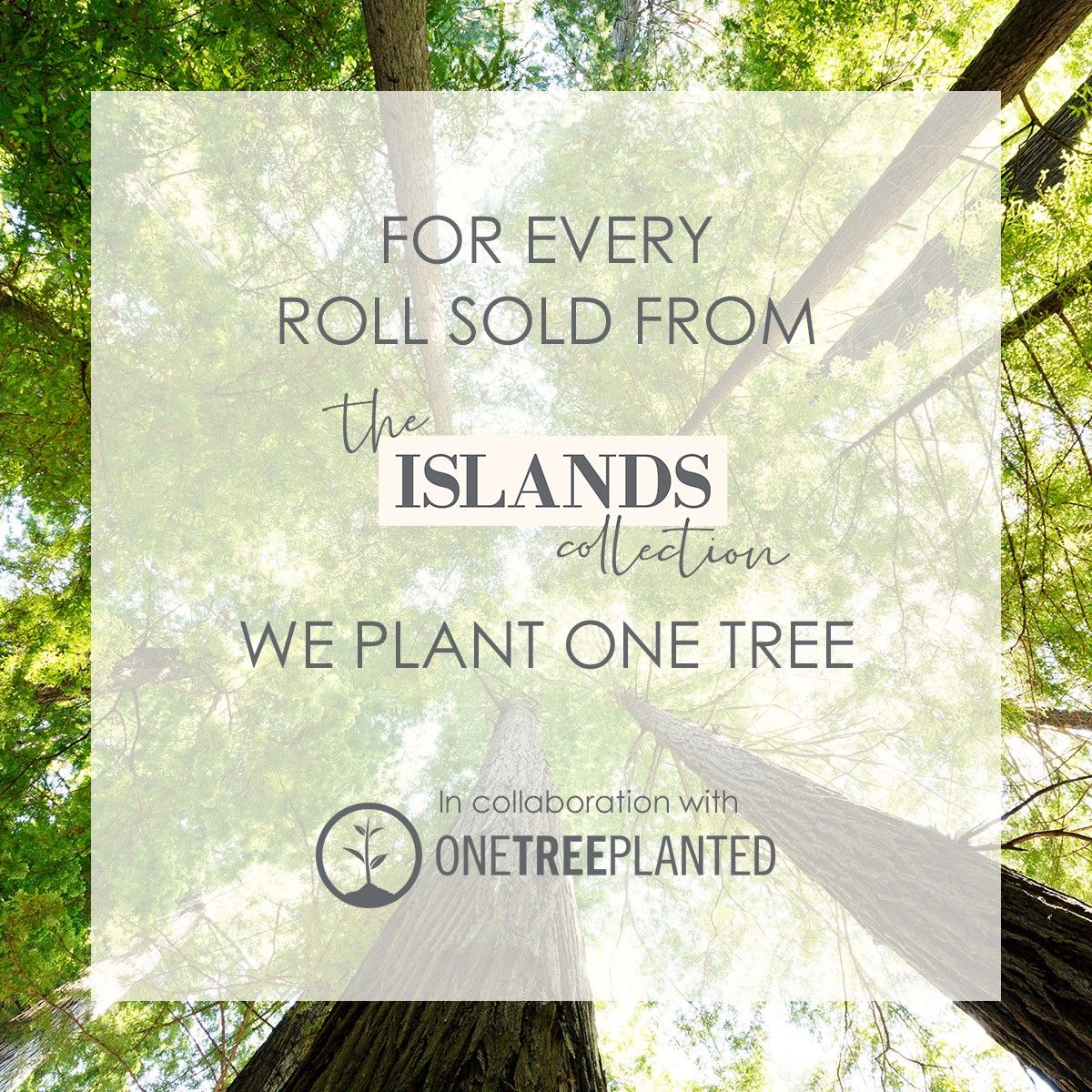 Image showing that for every roll sold from The Islands collection we will plant one tree.