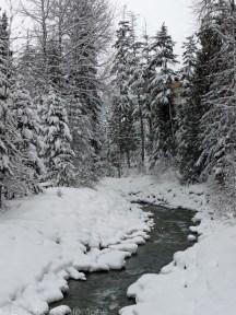 Stream flowing through Whistler Village