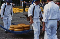 Cheese Carriers Carrying Cheese