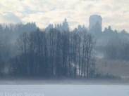 Deer Lake Park Winter 5