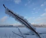 Deer Lake Park Winter 9