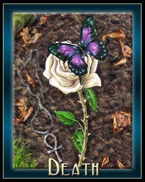 Scorpio = Death & Transition | Elizabeth Seer