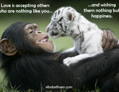 Love Thy Neighbor (for Happiness)
