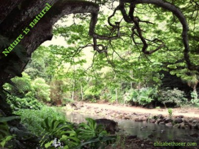 natureisnatural