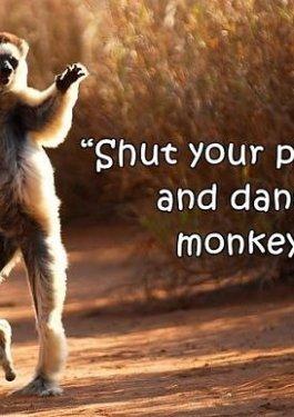 Dancing Monkey Syndrome