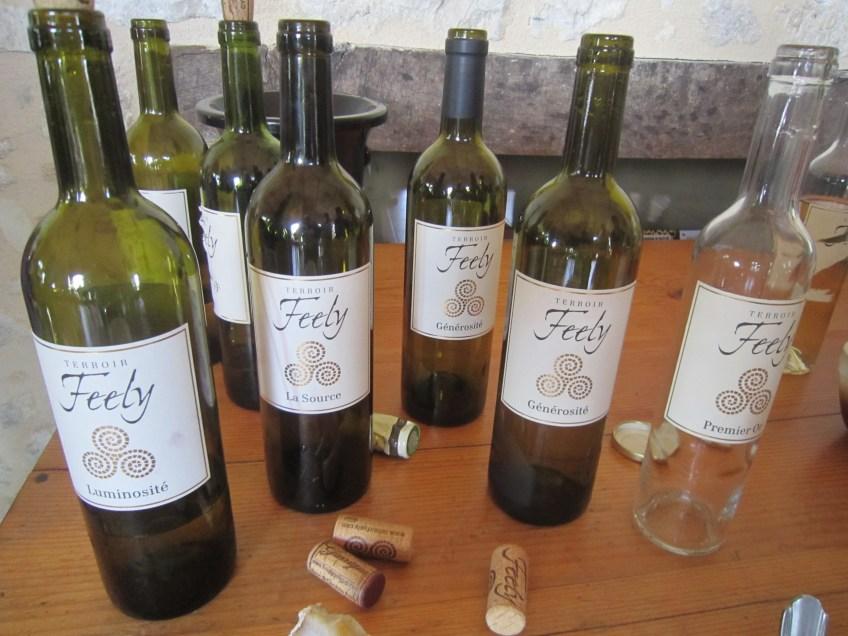 Wine Tasting at Terroir Feely