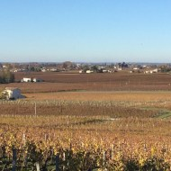 Views across Saint Emilion vineyards