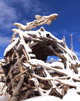 driftwoodnestonsnowday