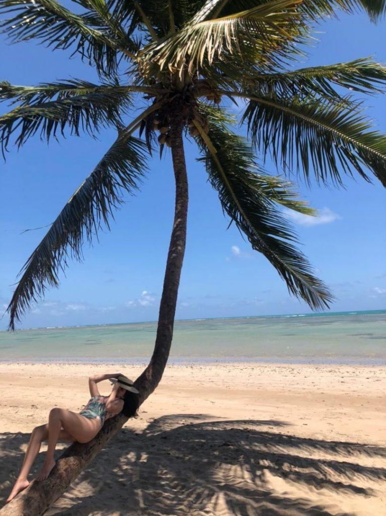 coqueiro na praia do patacho