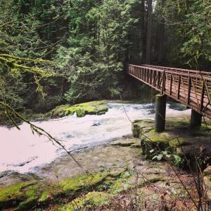 Lower Falls, Lacamas Creek, Camas, Washington