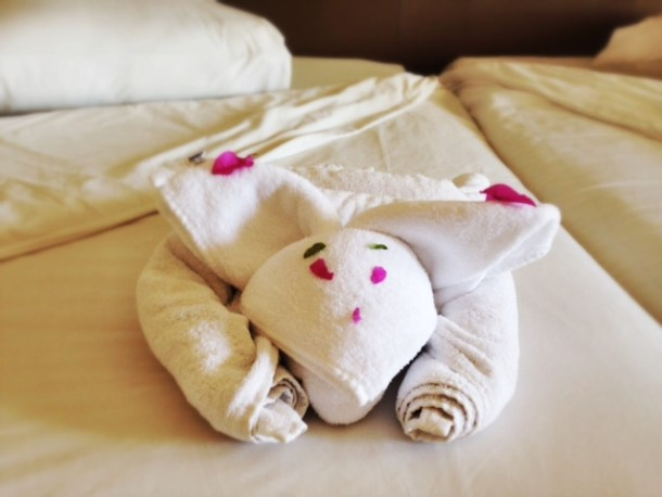 Jaz Aquamarine Towel Art - Cat