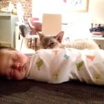 Dear HB, please go to sleep – getting a newborn to sleep