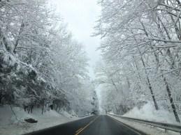 A magical fairy snow land!