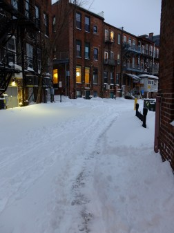 Safely beyond our door. A view down Amber Lane.