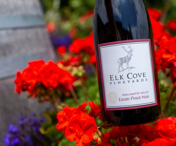 Elk Cove Pinot Noir Willamette Valley