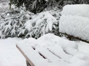 Schneebank
