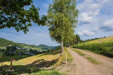 Kahler Asten Steig_0030